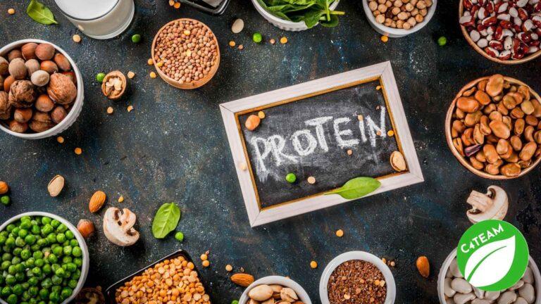c4teamfamily białko roślinne